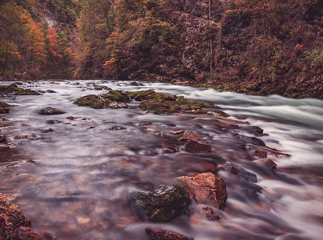 river-983888_640